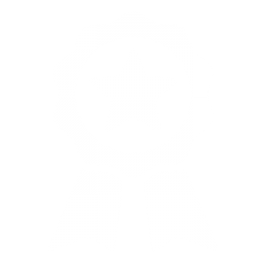 rosette with star in middle